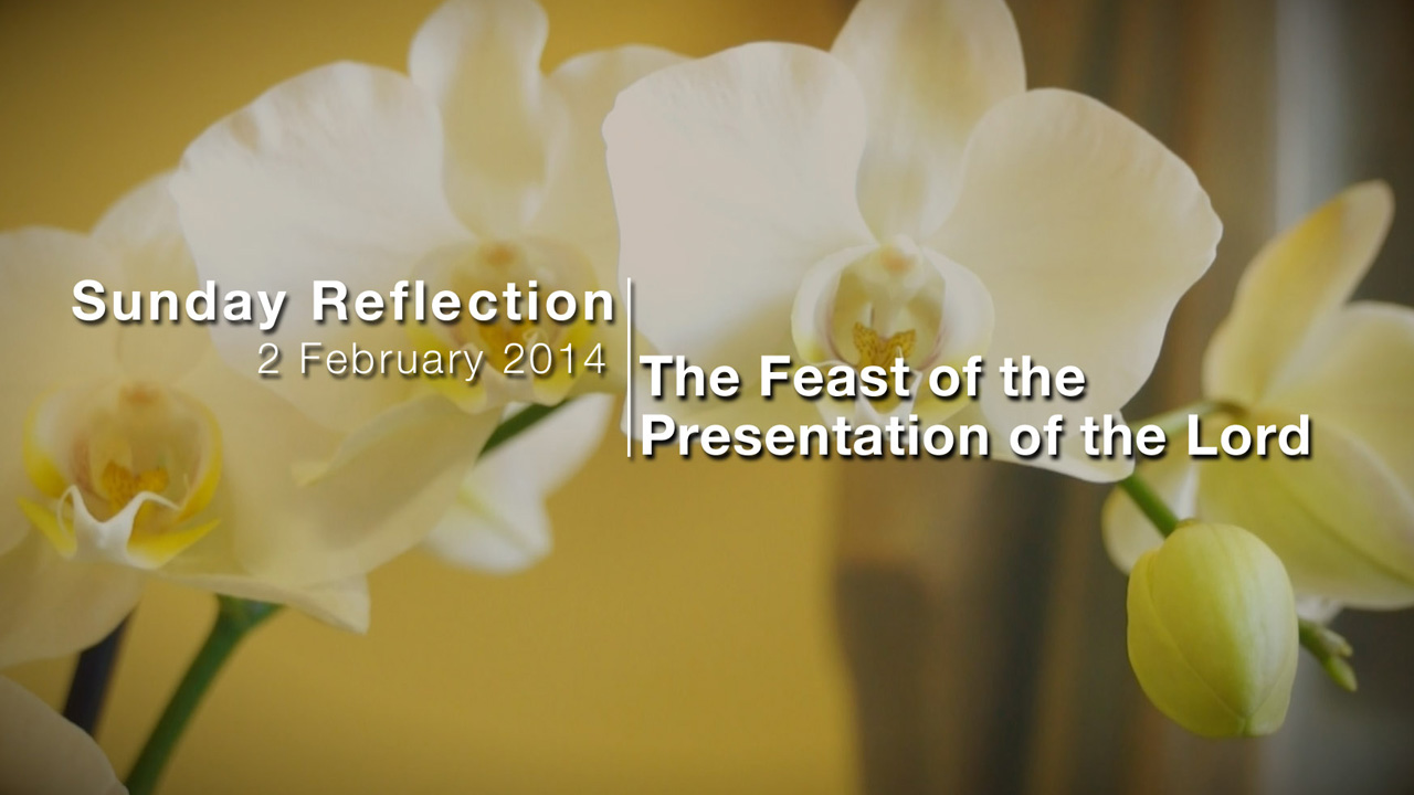 Feast of the Presentation of the Lord – Reflection