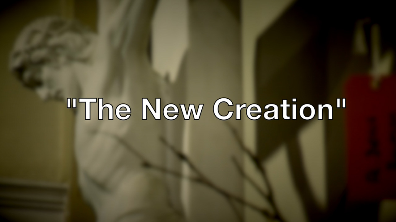The New Creation – Reflection for Palm Sunday