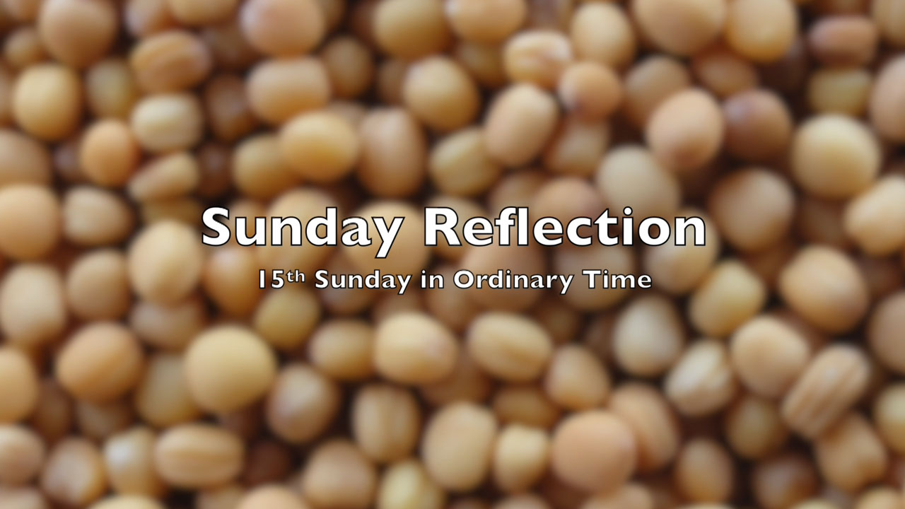 Reflection for 15th Sunday in Ordinary Time