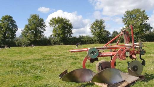 Ploughing_2015_Poem2_iC