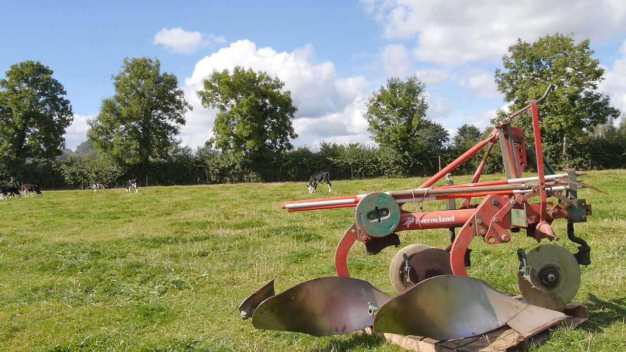 A Poem for the Ploughing