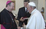 'Please pray for me that I don't make too many silly mistakes… ' (Pope Francis)