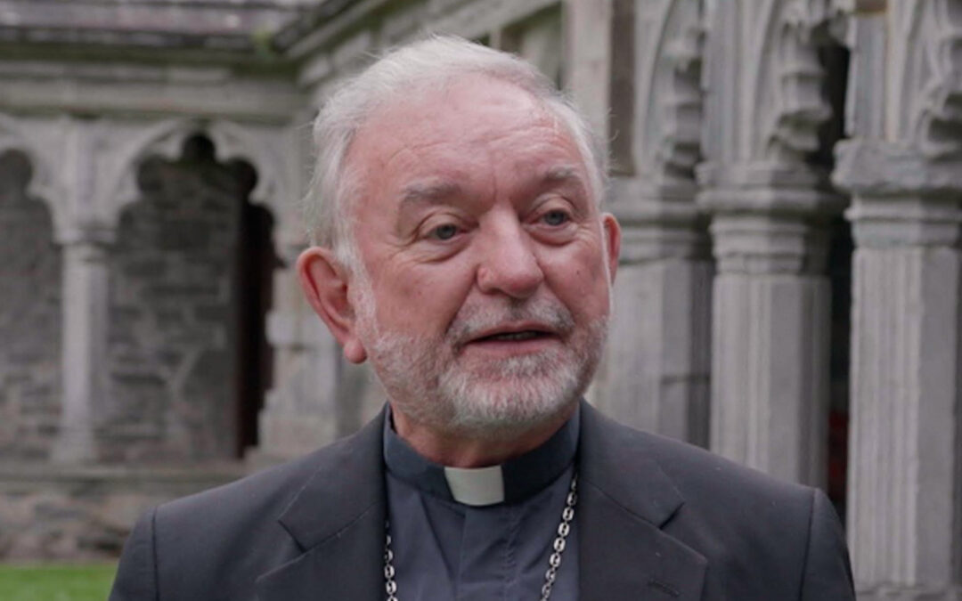 Cashel & Emly to launch 'Seeds of Hope' pastoral plan